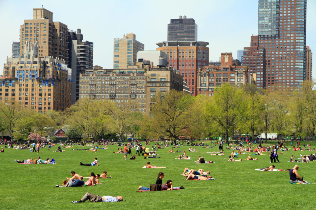 3015-Central_Park-Sheep_Meadow-e1468449714426